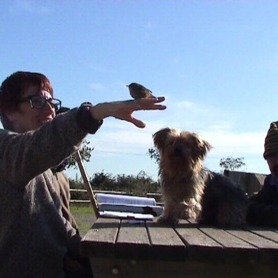 Experiments 2 - L'anellador (2011)