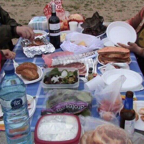 Experimento 1. Pícnic (2011)