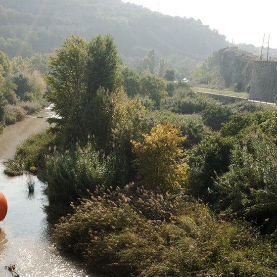 Avall pel riu Cardener